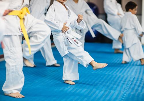 karate9