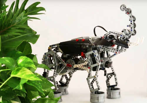 robotics11